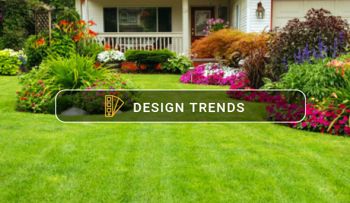 Can Planting Grass Really Be This Simple?